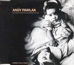 andy pawlak - she kept a hold of love.JPG